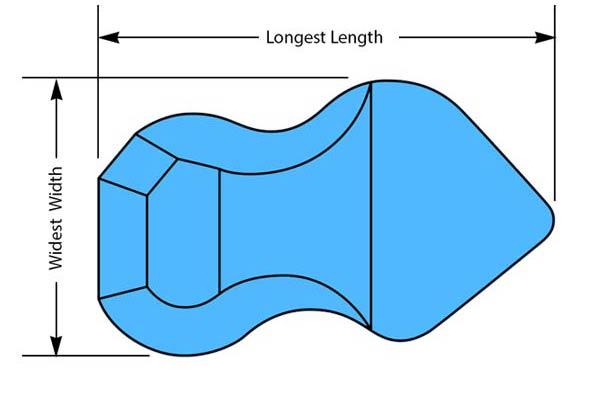 Freeform Pool Shape